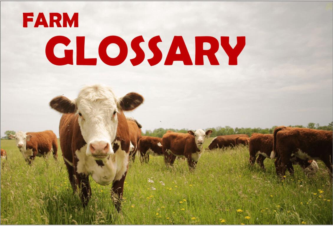 """Farm Glossary <i class=""""fa fa-external-link""""></i>"""