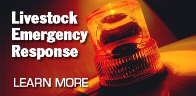 "Livestock Emergency Response <i class=""fa fa-external-link""></i>"